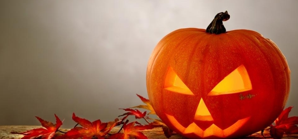 Spooky Halloween Discover Arts Award for children takes place at DC3 on Wed 30th October 10am-4.30pm